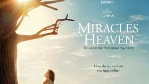 Los milagros delcielo
