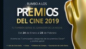 rumbo a los premios 2019