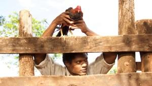 """Filmada en locaciones de Barahona, """"La Isla Rota"""" narra la historia de Guy, un niño haitiano que escapa de la pobreza en su país y al que le toca presenciar el terrible asesinato de sus padres al cruzar la frontera hacia República Dominicana. Foto: MAFE Films"""